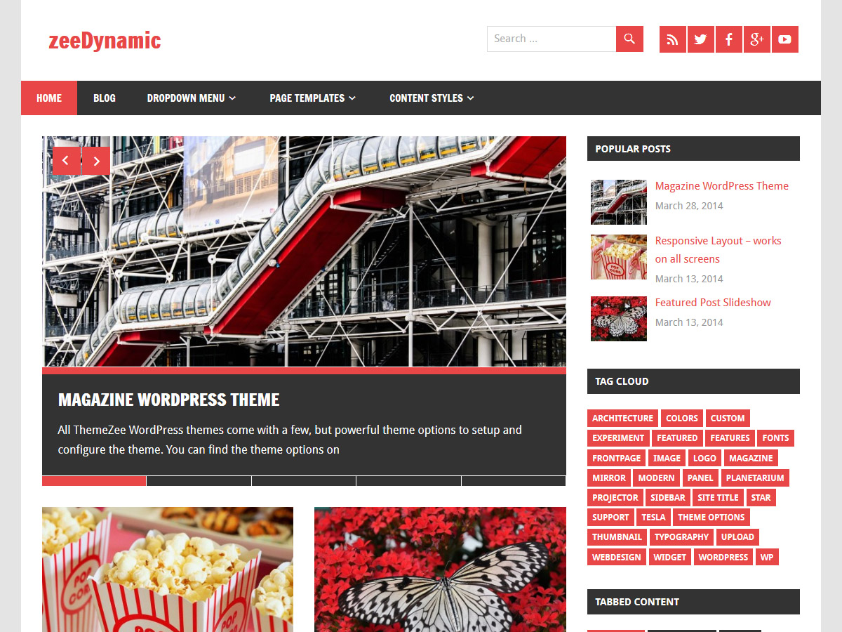 zeeDynamic Download Free Wordpress Theme 2
