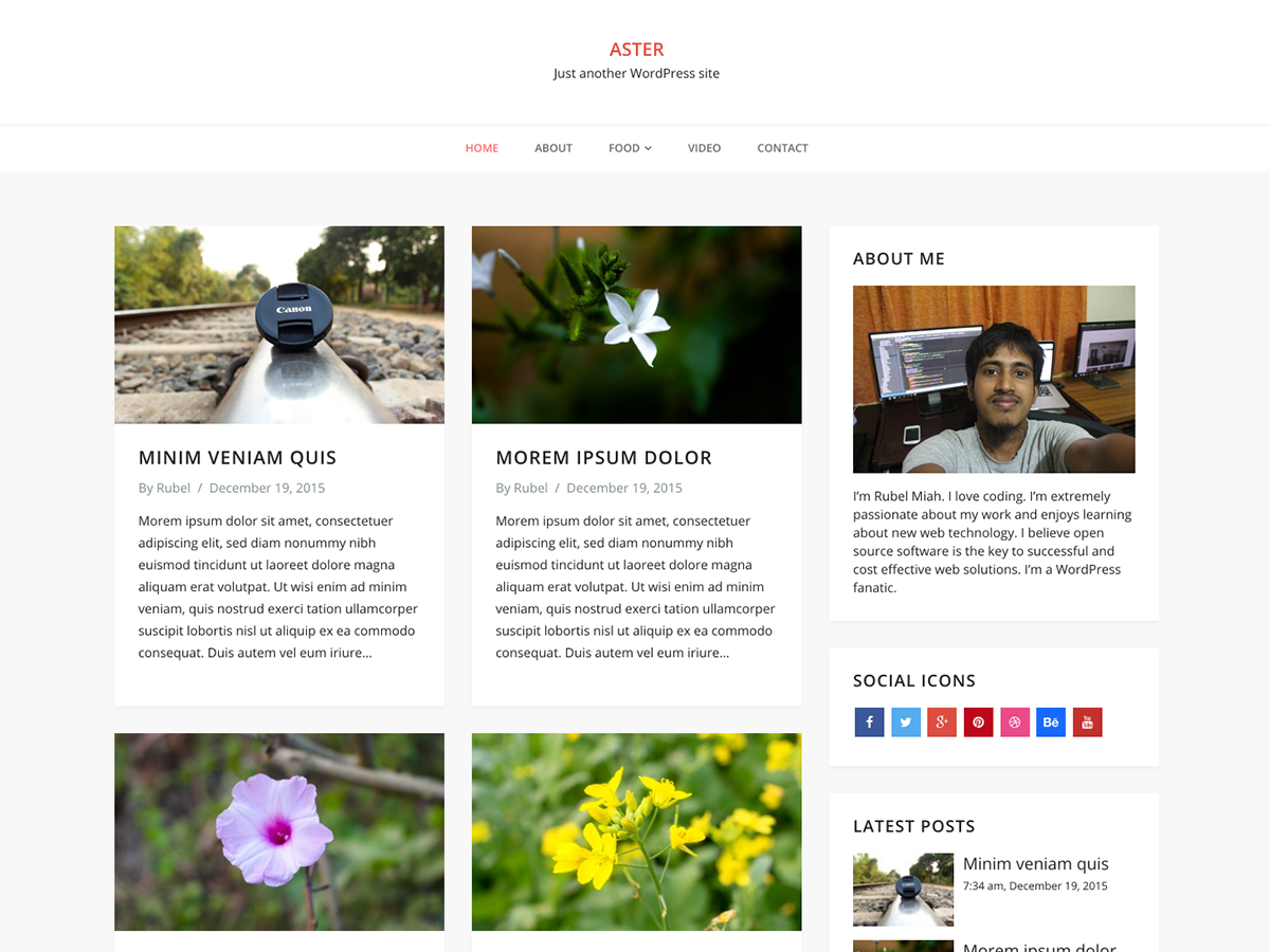 Aster Download Free Wordpress Theme 4