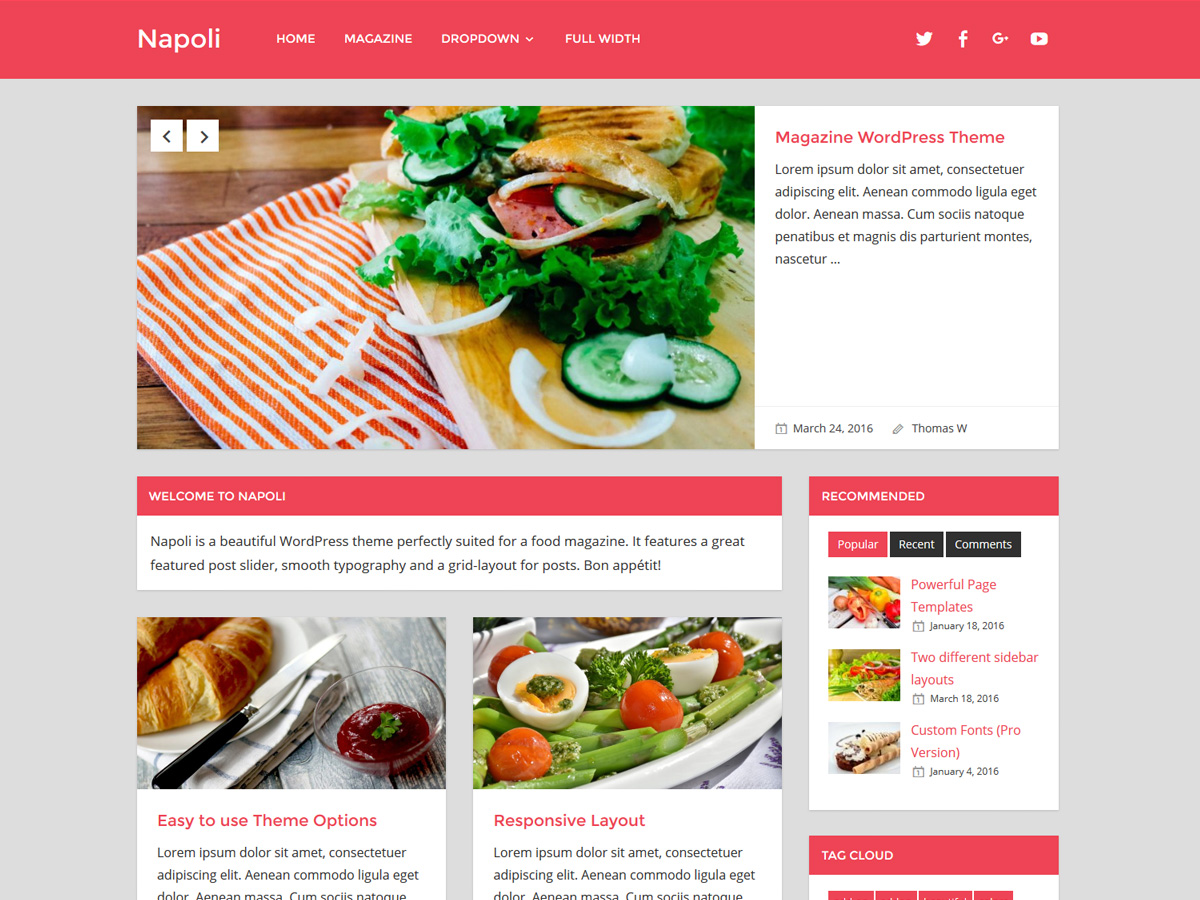 Napoli Download Free Wordpress Theme 1