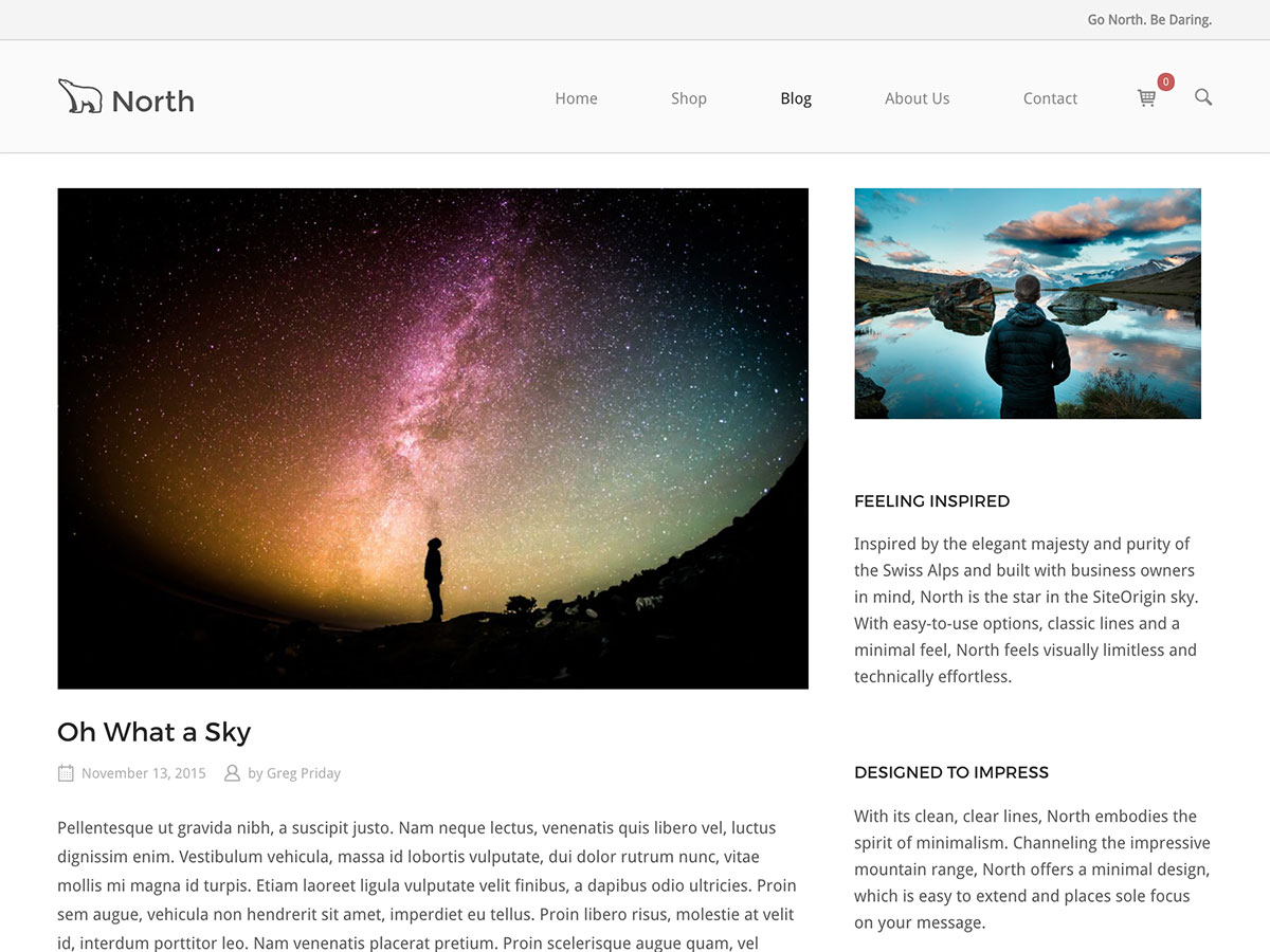 SiteOrigin North Download Free Wordpress Theme 2
