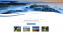 Longevity Download Free WordPress Theme