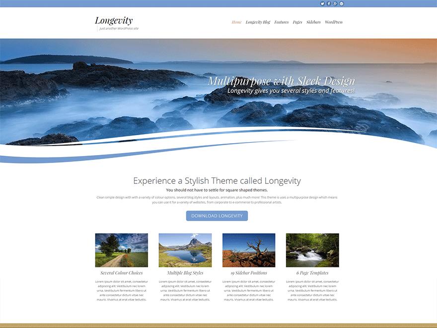 Longevity Download Free Wordpress Theme 2