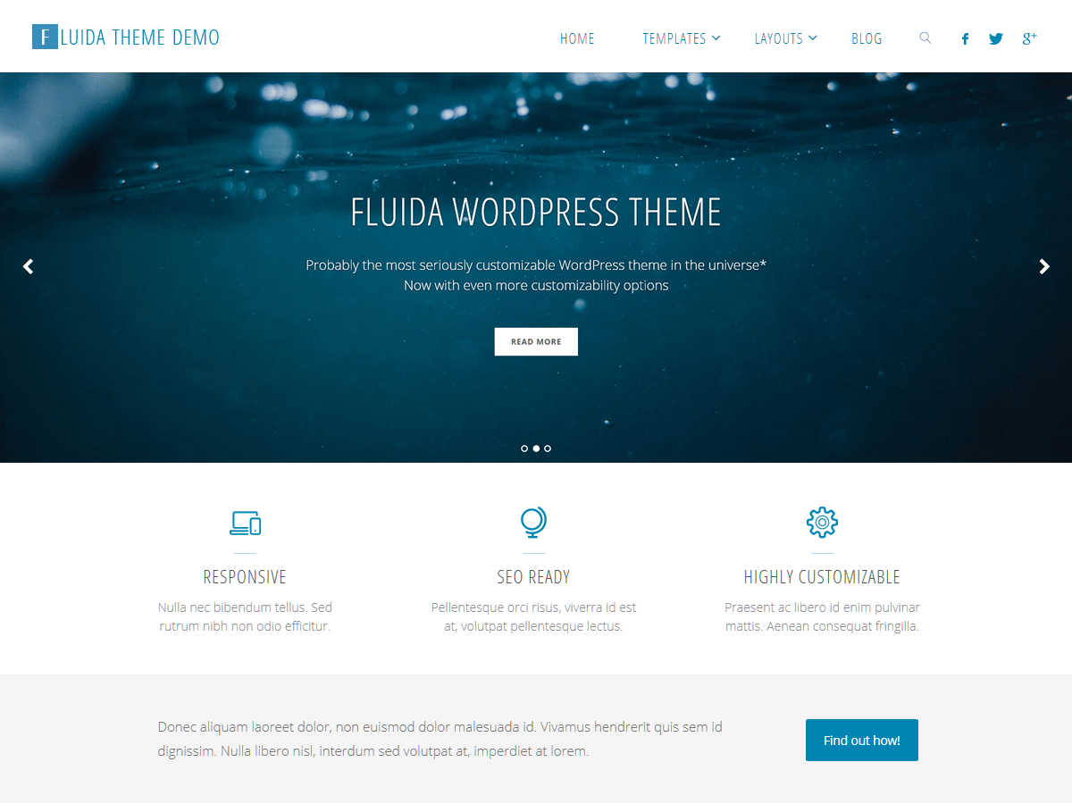 Fluida Download Free Wordpress Theme 4