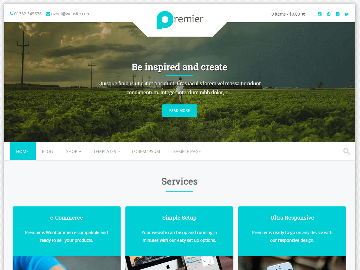Premier Download Free Wordpress Theme 5