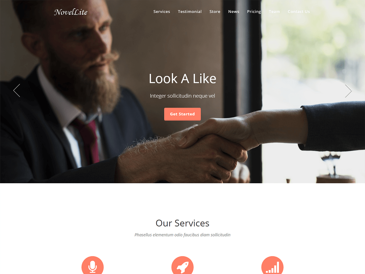 NovelLite Download Free WordPress Theme