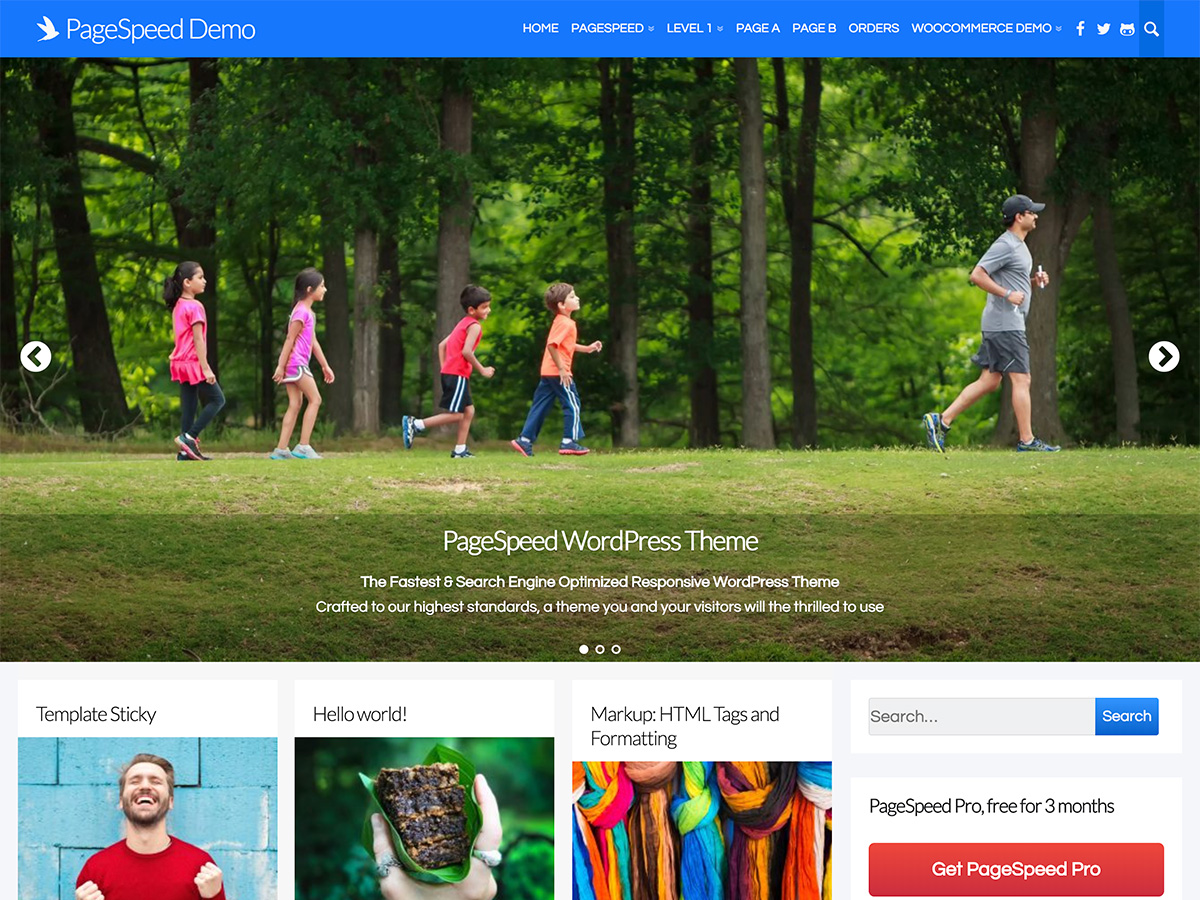 Page Speed Download Free Wordpress Theme 4