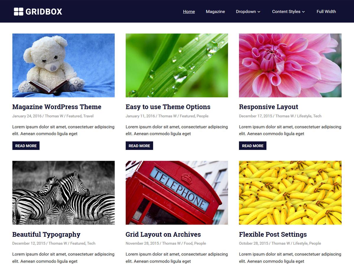 Gridbox Download Free Wordpress Theme 5