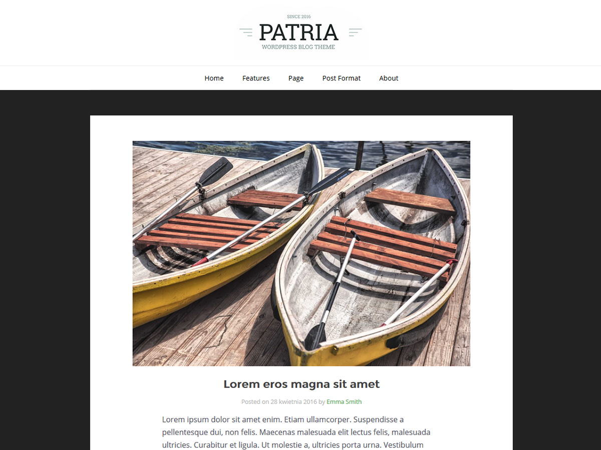 Patria Download Free Wordpress Theme 3