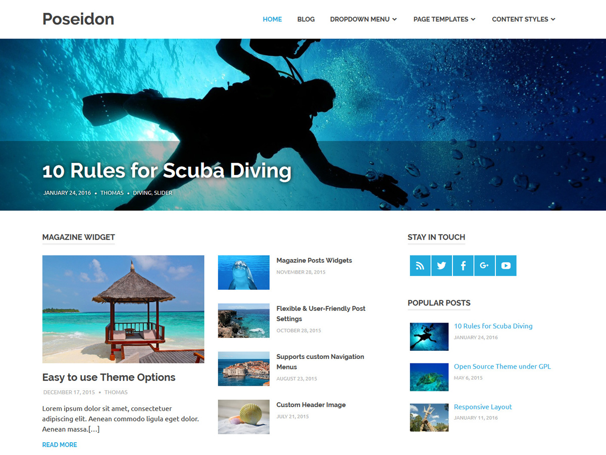 Poseidon Download Free Wordpress Theme 1
