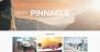 Pinnacle Download Free WordPress Theme