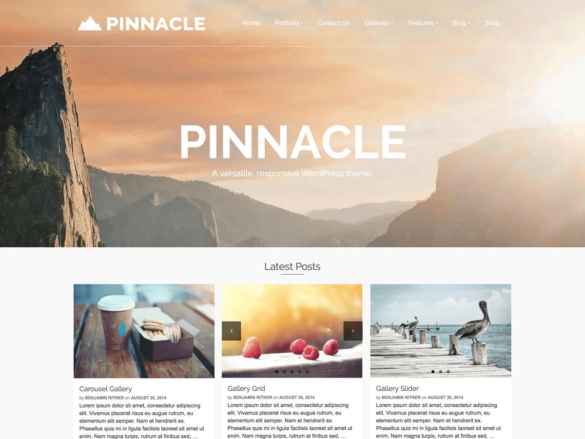Pinnacle Download Free Wordpress Theme 3