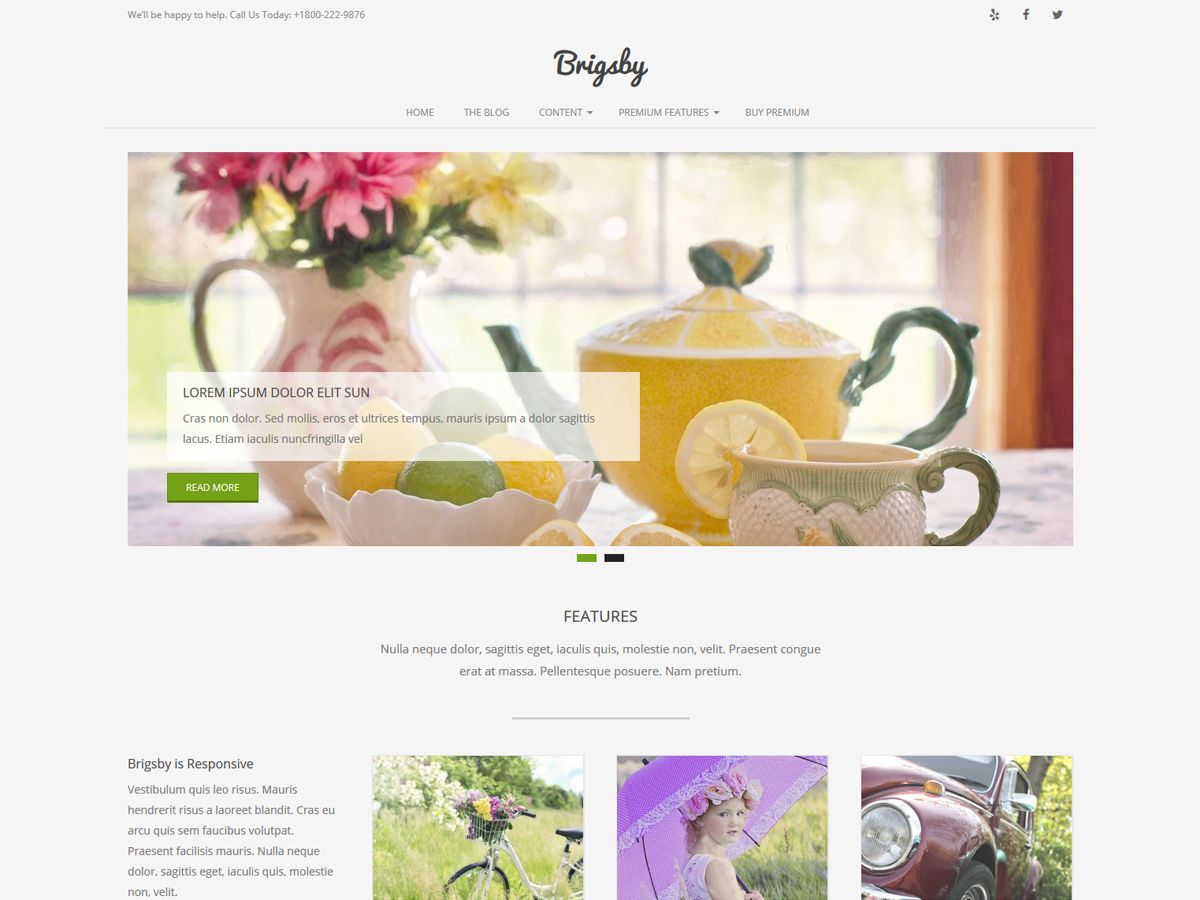 Brigsby Download Free Wordpress Theme 2