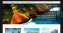 Tempera Download Free WordPress Theme
