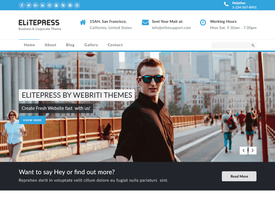 ElitePress Download Free Wordpress Theme 2