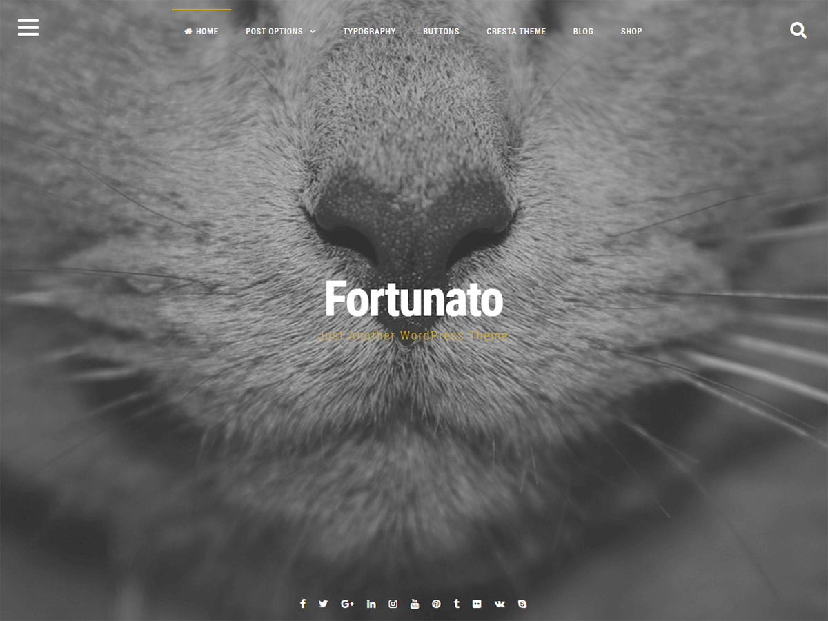 Fortunato Download Free Wordpress Theme 2
