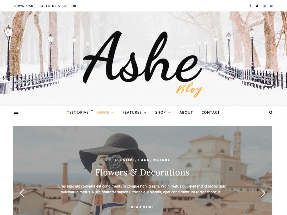 Ashe Download Free Wordpress Theme 2