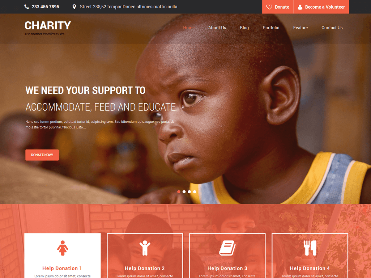 SKT Charity Download Free Wordpress Theme 3