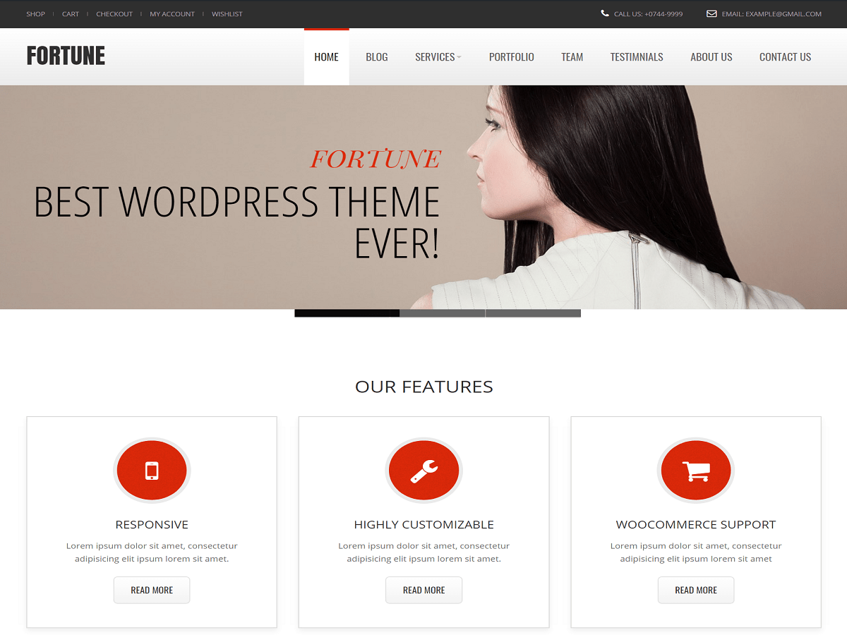Fortune Download Free Wordpress Theme 2