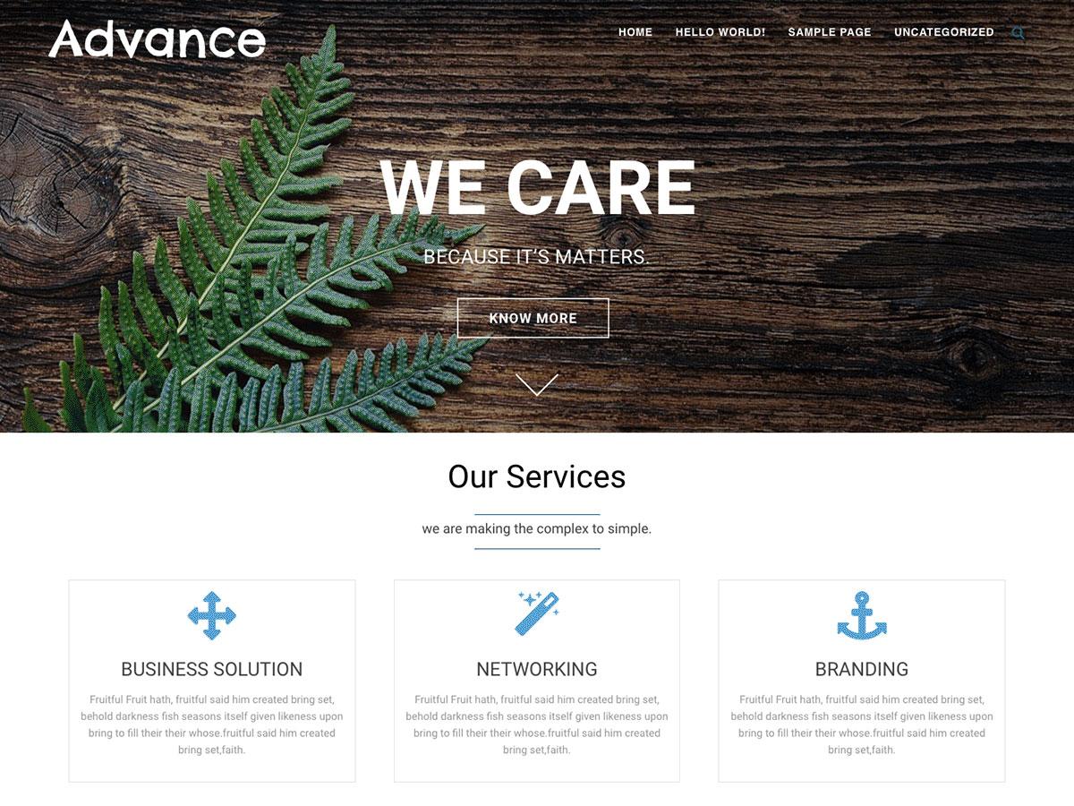 Advance Download Free Wordpress Theme 5