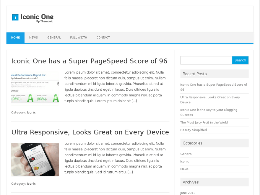 Iconic One Download Free Wordpress Theme 3