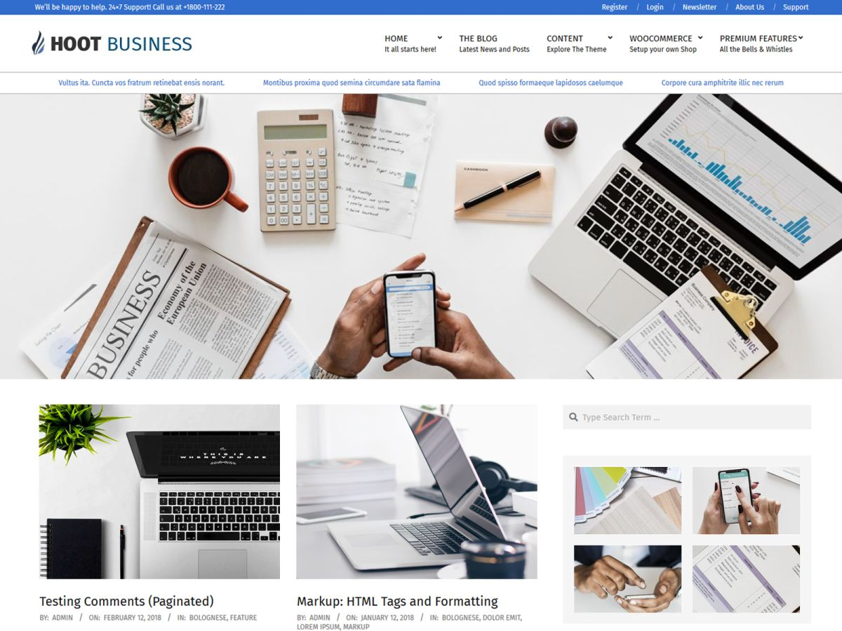 Hoot Business Download Free Wordpress Theme 1