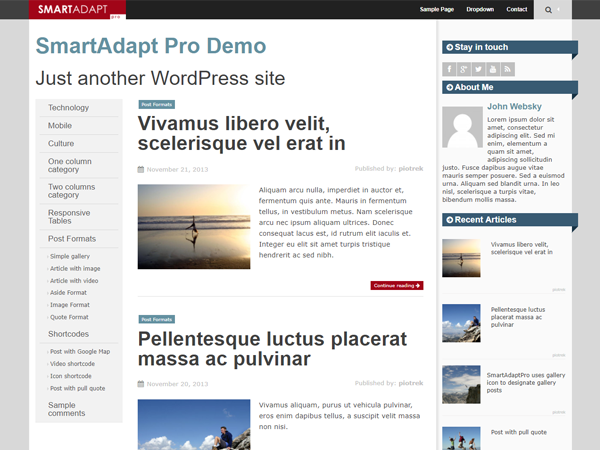 SmartAdapt Download Free Wordpress Theme 2