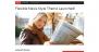 The Newswire Download Free WordPress Theme