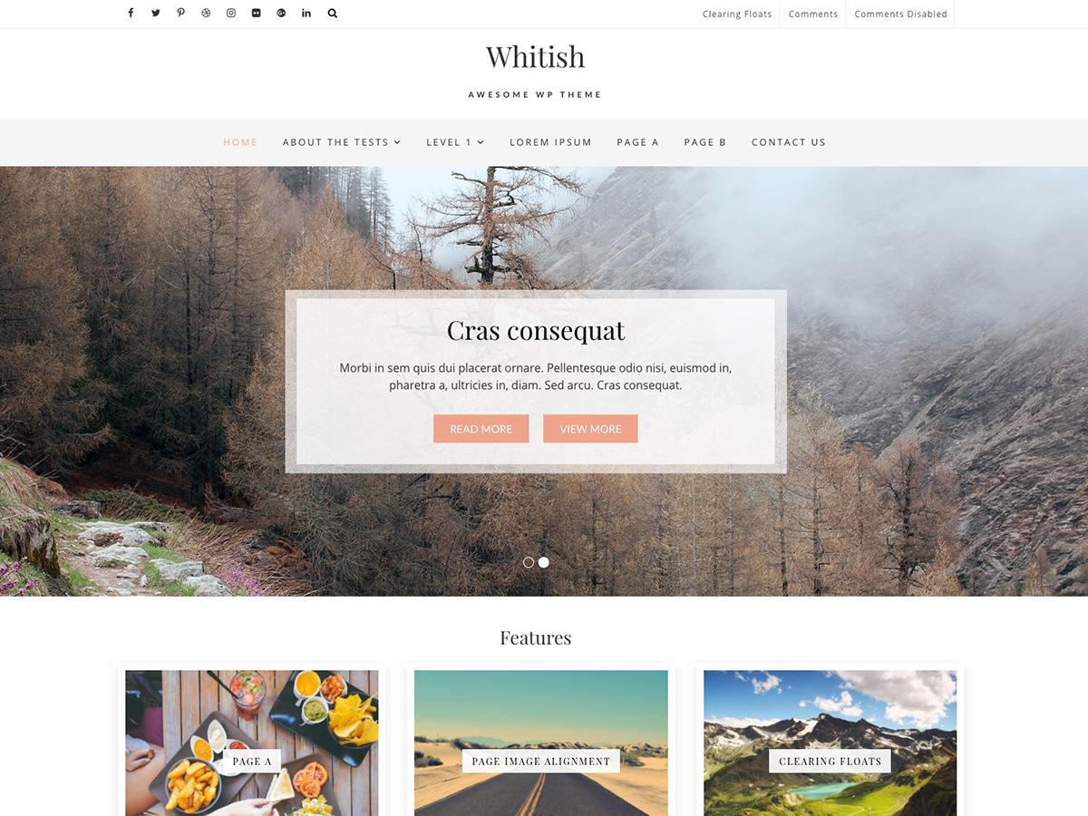 Whitish Lite Download Free Wordpress Theme 2