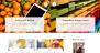 Fire Blog Download Free WordPress Theme
