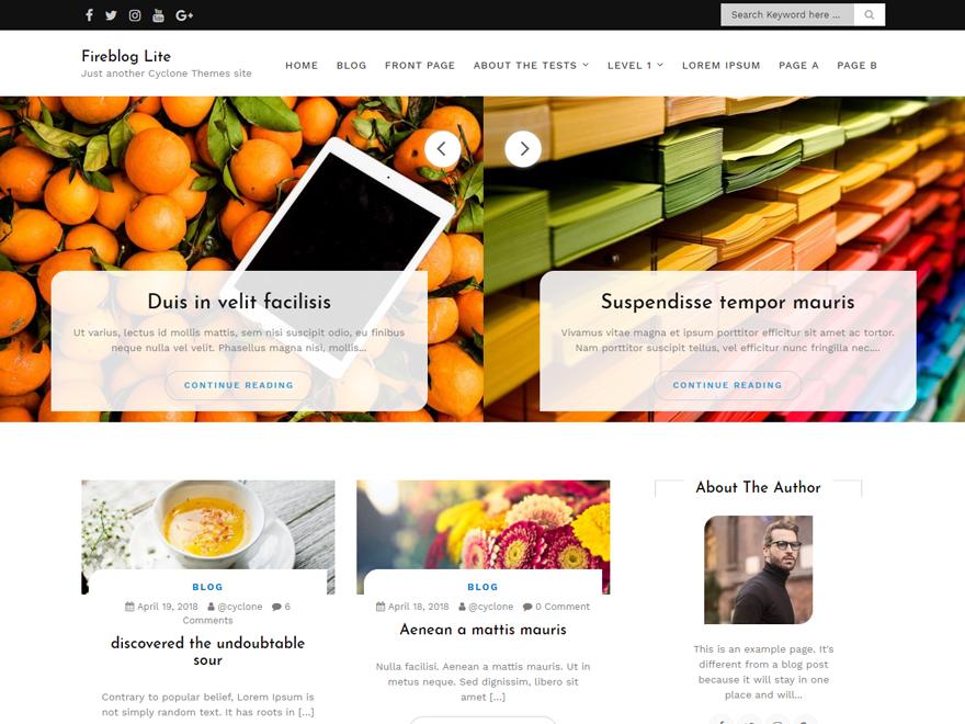 Fire Blog Download Free Wordpress Theme 5