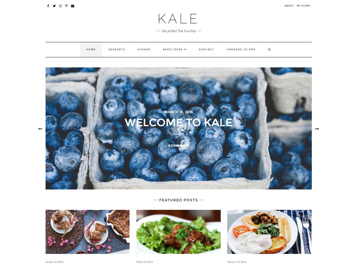 Kale Download Free Wordpress Theme 2