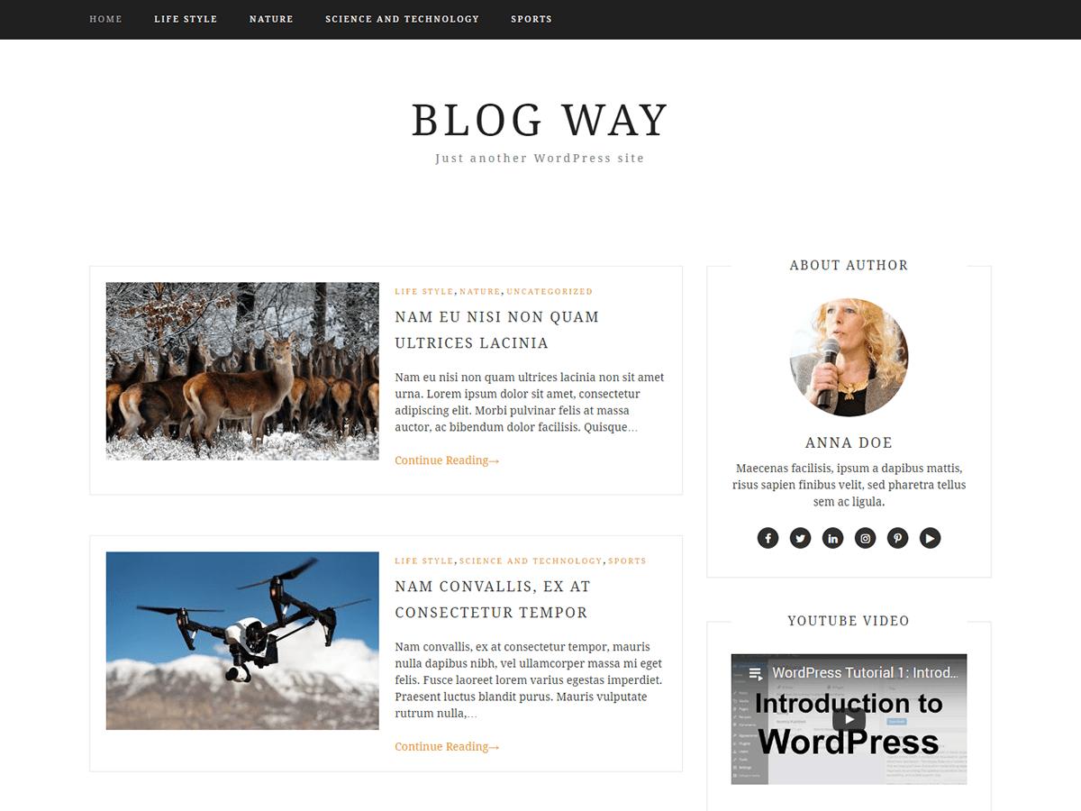 Blog Way Download Free Wordpress Theme 2
