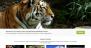 Adventurous Download Free WordPress Theme