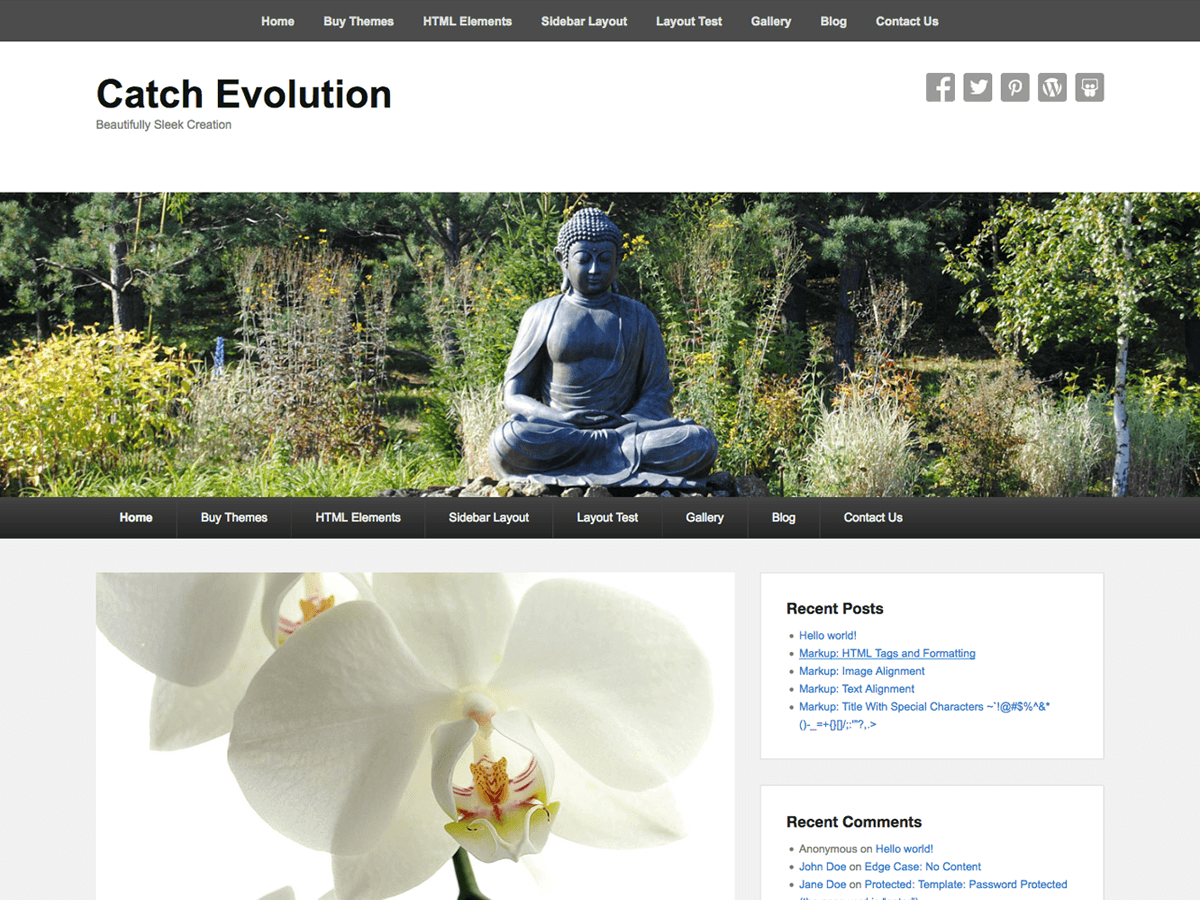 Catch Evolution Download Free Wordpress Theme 3