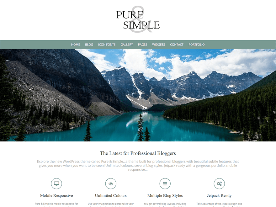 Pure & Simple Download Free Wordpress Theme 2