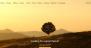 The WP Download Free WordPress Theme