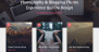 PhotoBlogster Download Free WordPress Theme